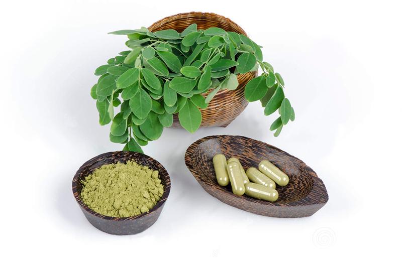 hojas-polvo-y-capsulas-de-moringa